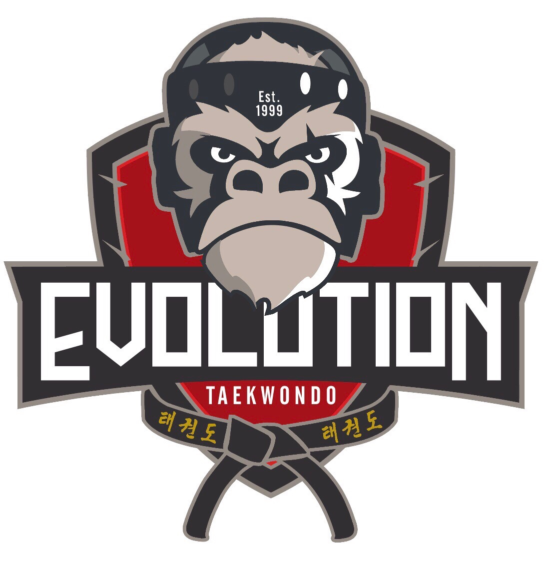 Evolution TaeKwonDo Members Website - Martial Arts Classes in Peterborough